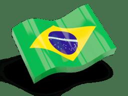 Non Woven Printed Fabric  in Brazil