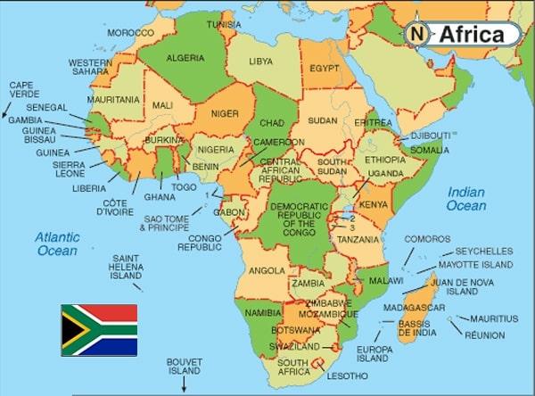 africa - Plastic Drum Liners